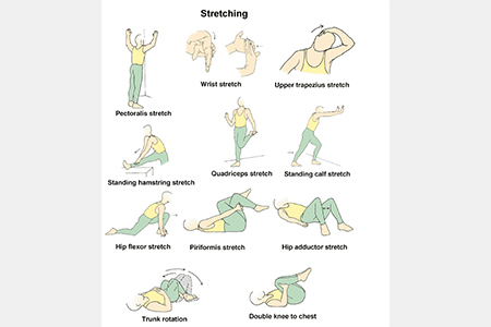 Picture of a person stretching in diferent positions